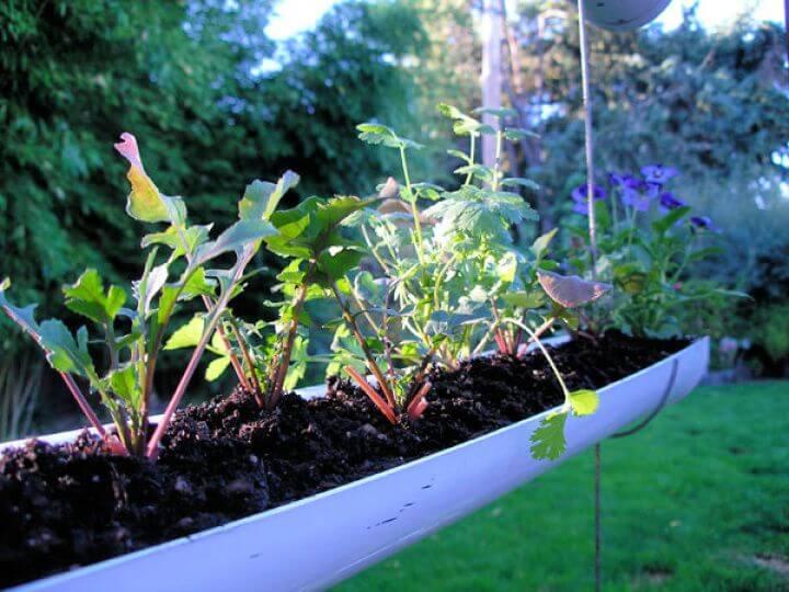 gutter garden ideas, how to ideas, diy ideas