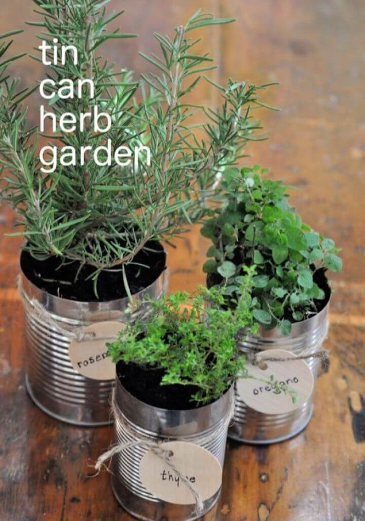 tin can herb, garden decor, tin cans decorations, garden projects,