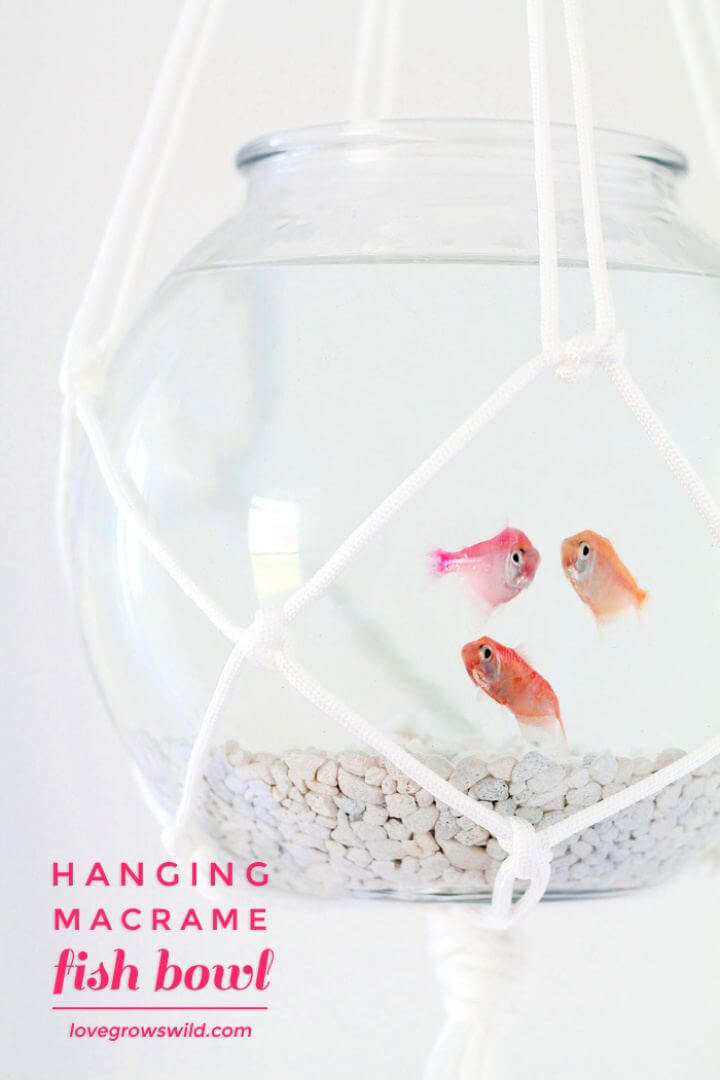Create A Hanging Macrame Fish Bowl