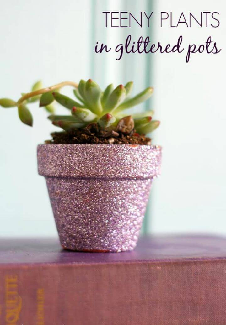 Easy DIY Teeny Plants in Glittered Pots