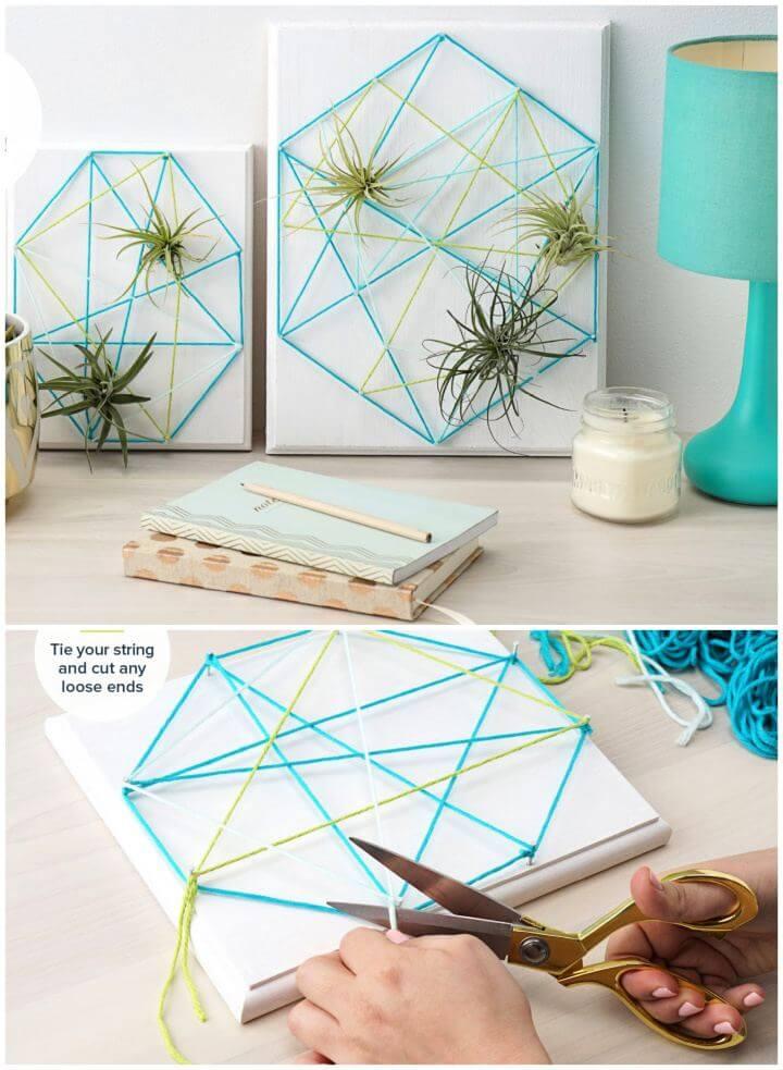 Make A DIY Air Plant String Art Tutorial
