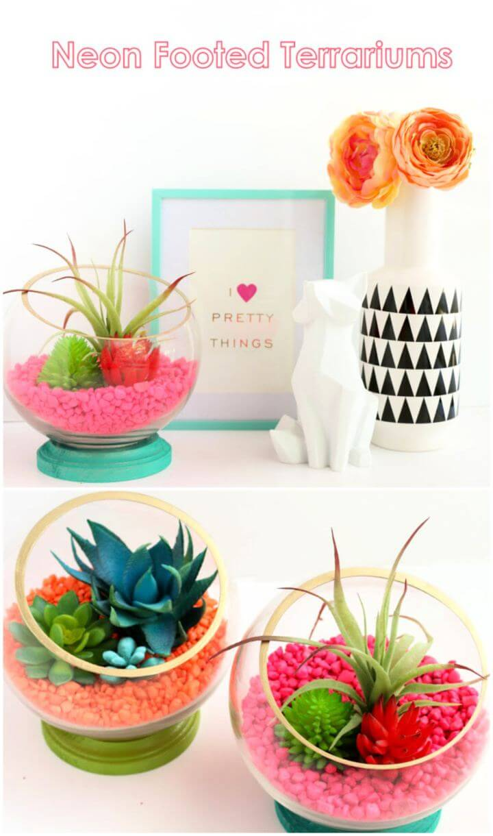 Make Your Own Neon Footed Terrariums