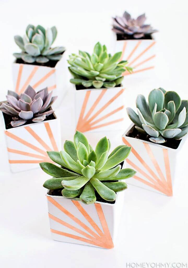 Create Your Own DIY Copper And White Succulent Planters