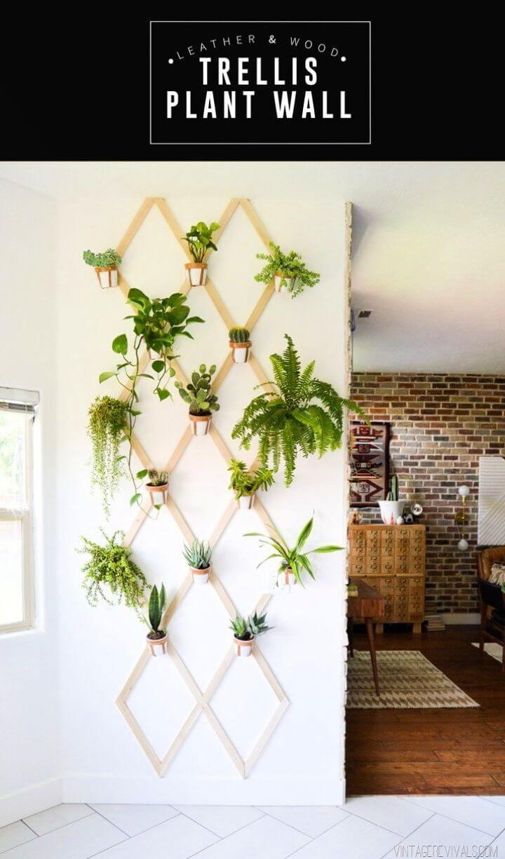 Cute DIY Wood and Leather Trellis Plant Wall