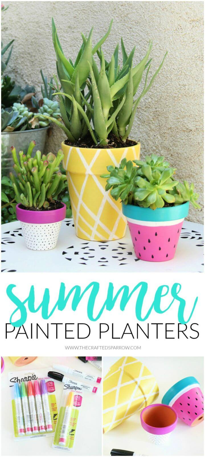Adorable DIY Summer Painted Planters