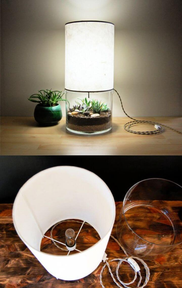 Make Your Own DIY Lamp With Small Terrarium