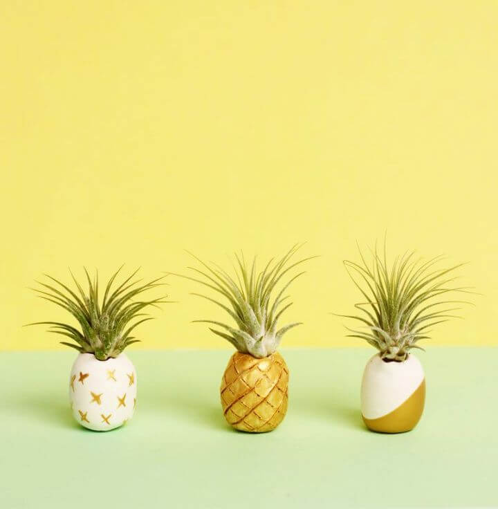 Simple DIY Clay Air Plant Holders
