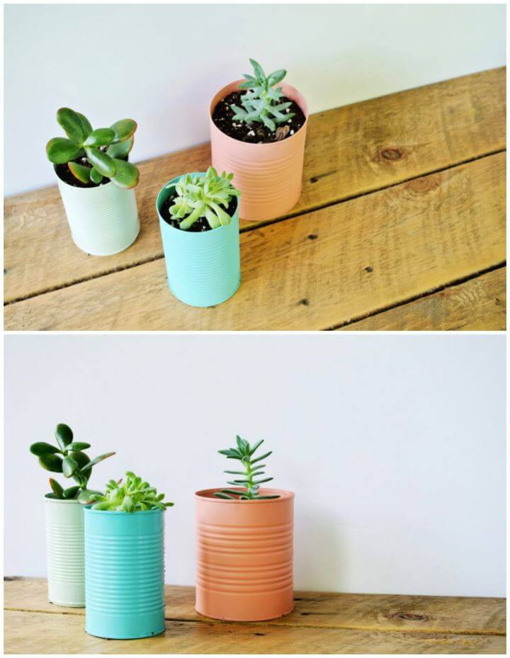 Cheap And Easy DIY Tin Can Planters