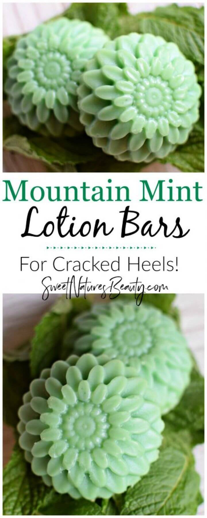 DIY Mountain Mint Lotion Bars – For Cracked Heels