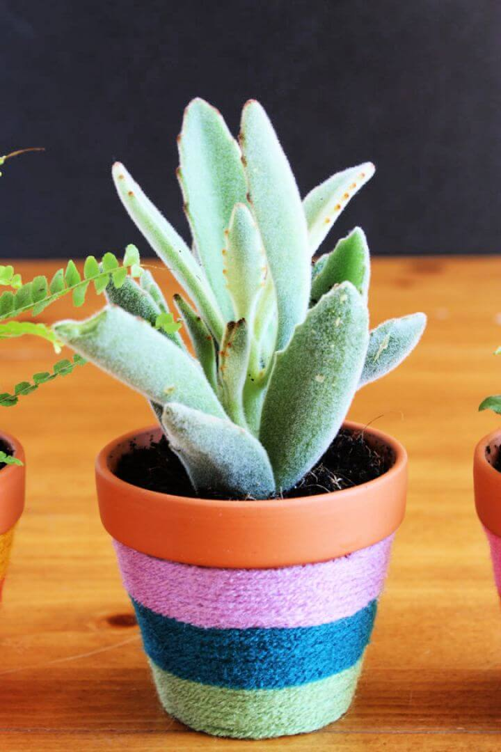 How To DIY Yarn Wrapped Flower Pots