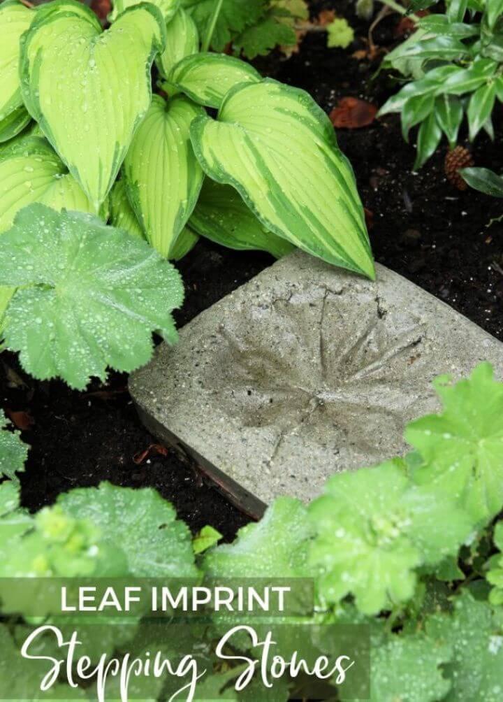 Leaf Imprint Stepping Stones