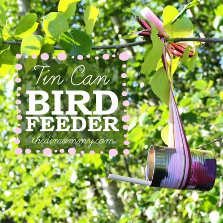 Make a Bird Feeder From A Tin Can